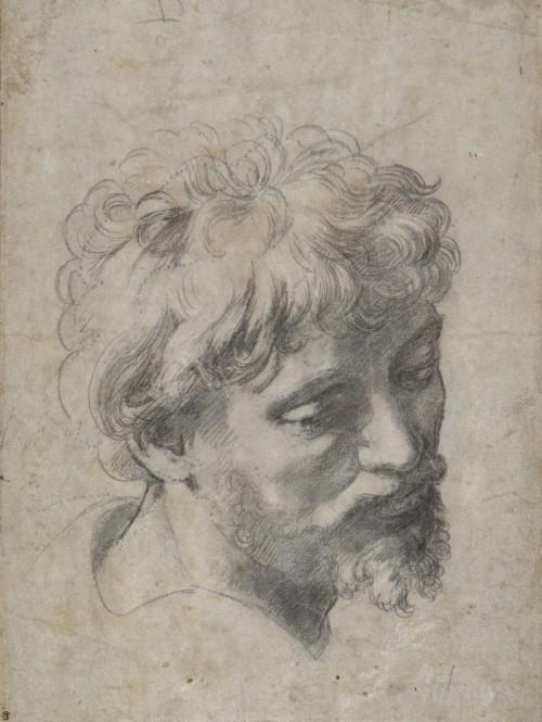 Raphael 009